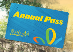 Busch gardens tampa bay coupons 2018 printable coupons savings specials Busch gardens pass member benefits