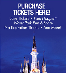 2014 Disney World Annual Pass